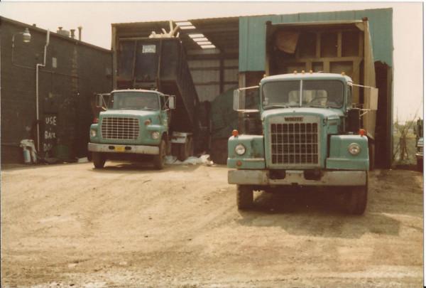 trucks at transfer